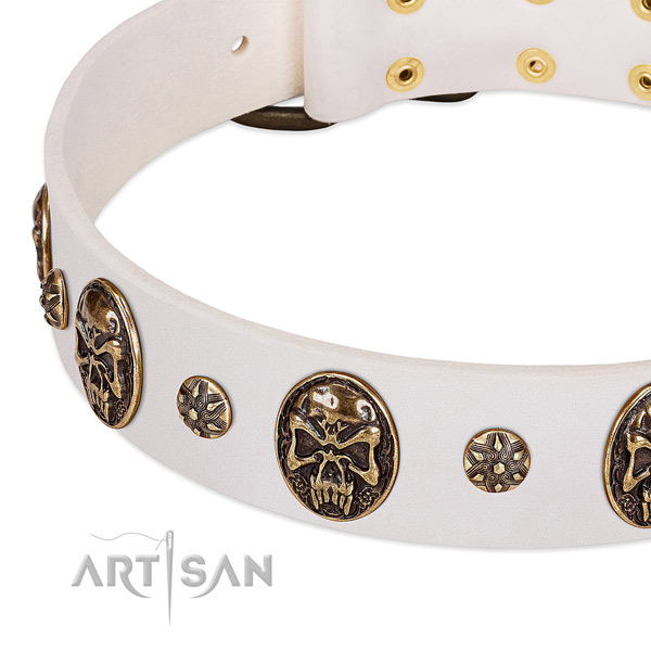 Durable traditional buckle on genuine leather dog collar for your dog