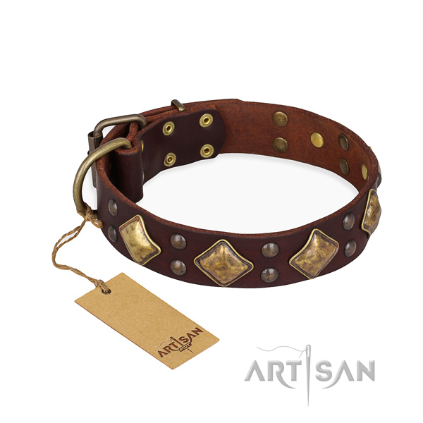 Easy wearing best quality dog collar with rust resistant fittings
