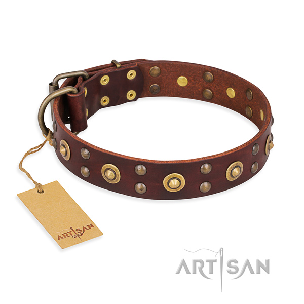 Impressive full grain natural leather dog collar with strong buckle
