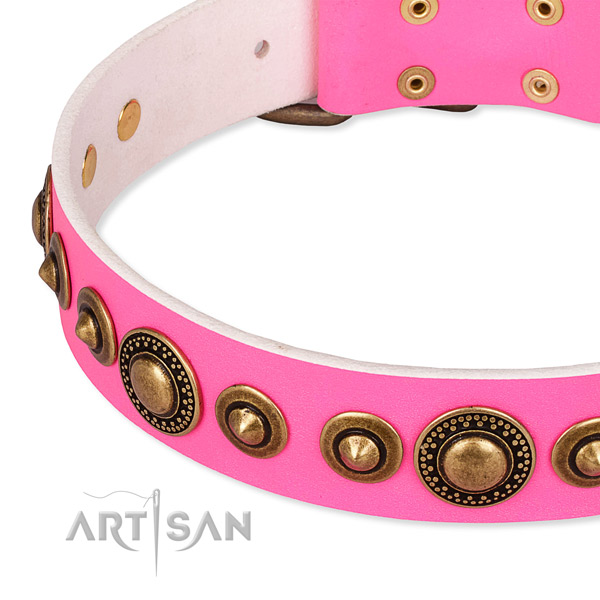 Strong full grain leather dog collar handcrafted for your stylish four-legged friend