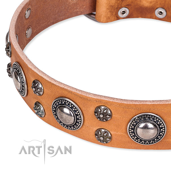 Everyday use decorated dog collar of strong natural leather