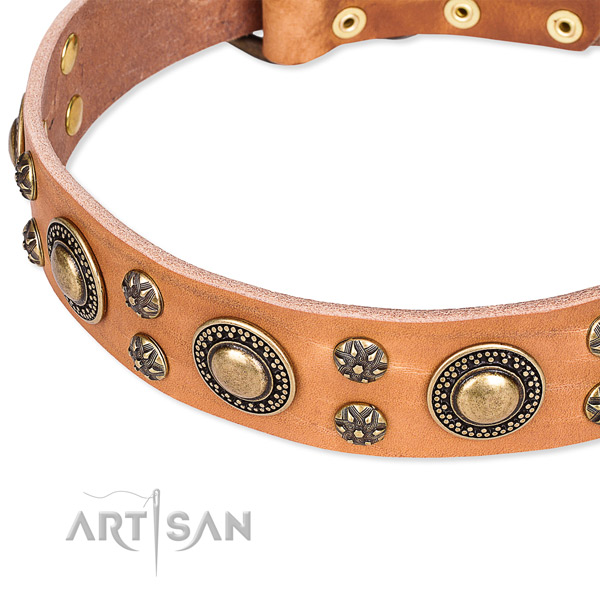 Easy wearing decorated dog collar of quality leather
