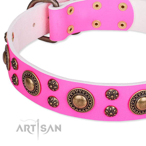 Basic training decorated dog collar of top notch leather