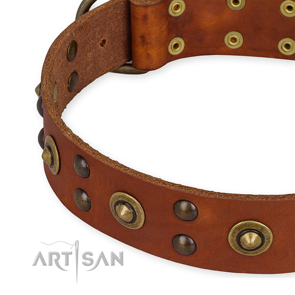 Leather collar with corrosion proof traditional buckle for your lovely doggie