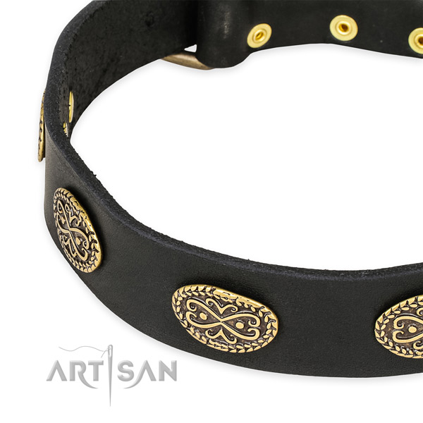Impressive genuine leather collar for your stylish canine