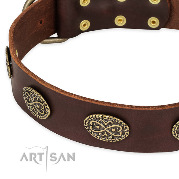 Unusual natural genuine leather collar for your stylish four-legged friend