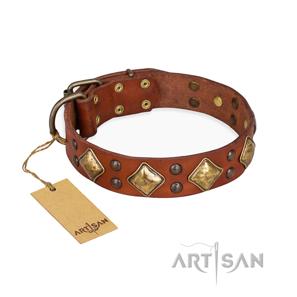 Comfortable wearing top quality dog collar with durable fittings