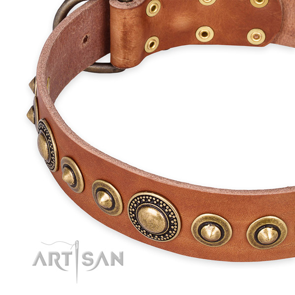 High quality leather dog collar crafted for your handsome doggie