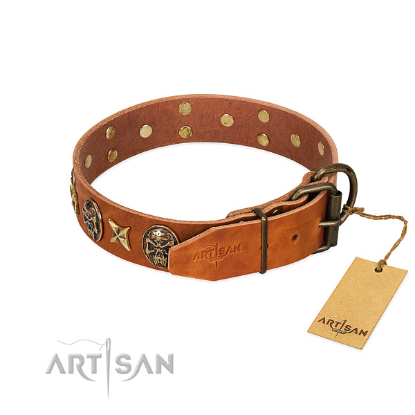 Genuine leather dog collar with rust resistant hardware and adornments