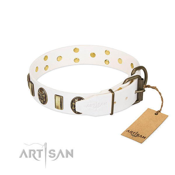Durable fittings on full grain natural leather collar for everyday walking your pet