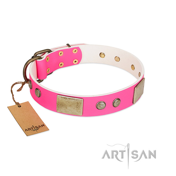 Adjustable full grain natural leather dog collar for walking your canine