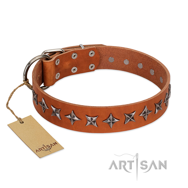 Easy wearing dog collar of quality leather with adornments