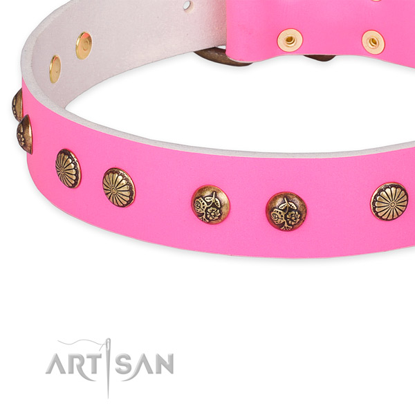 Full grain leather collar with corrosion proof hardware for your attractive canine