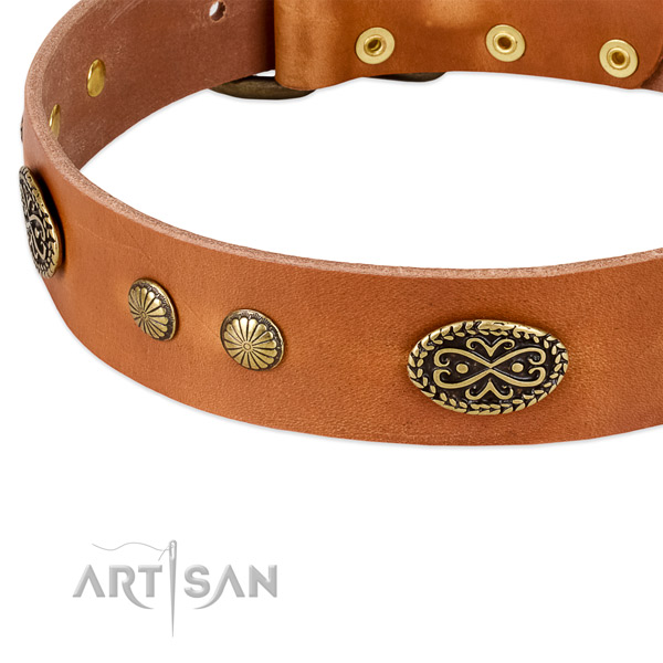 Corrosion resistant studs on full grain natural leather dog collar for your doggie