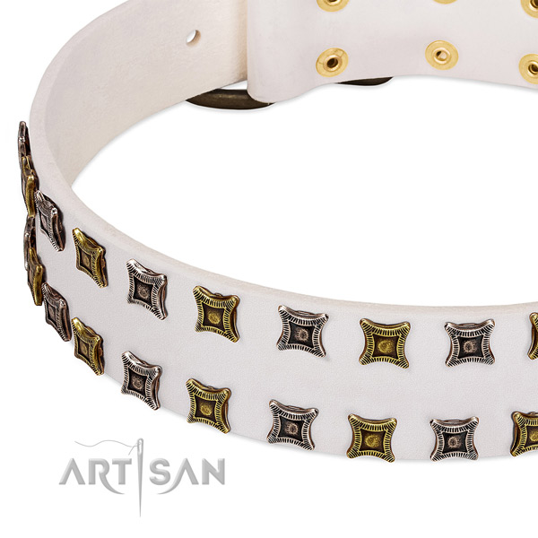 Natural leather dog collar with studs for your attractive pet