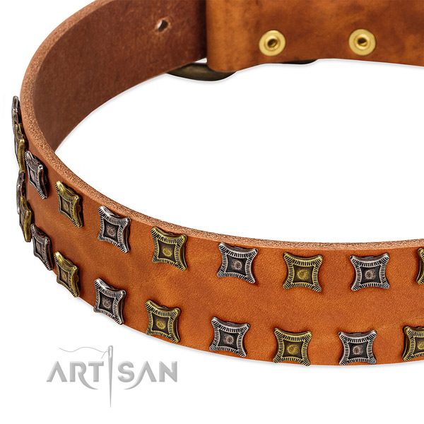 Top notch full grain genuine leather dog collar for your impressive four-legged friend