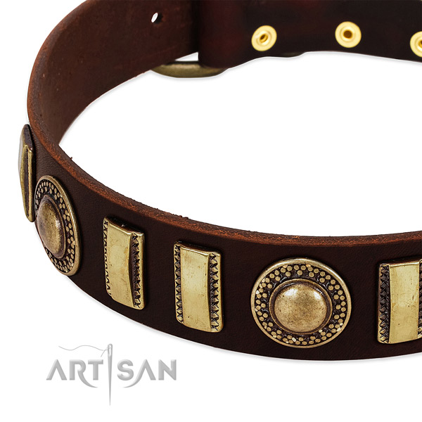 Durable full grain genuine leather dog collar with rust-proof fittings