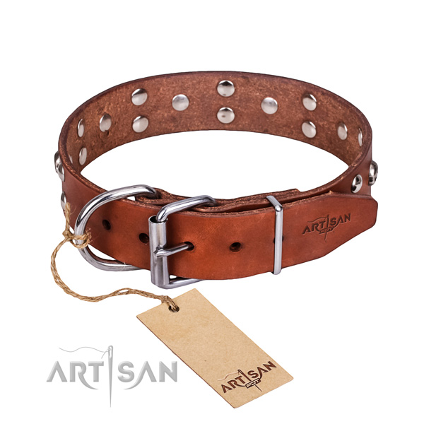Comfy wearing dog collar of strong leather with decorations