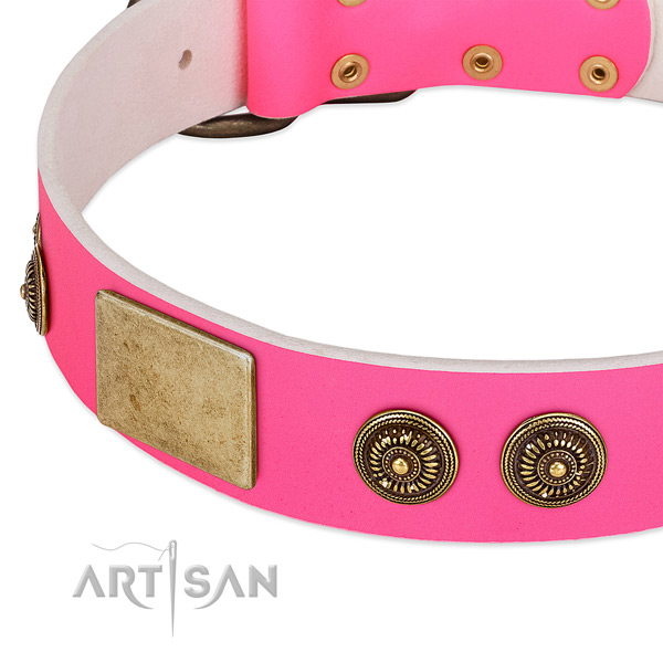Adjustable dog collar handcrafted for your attractive doggie
