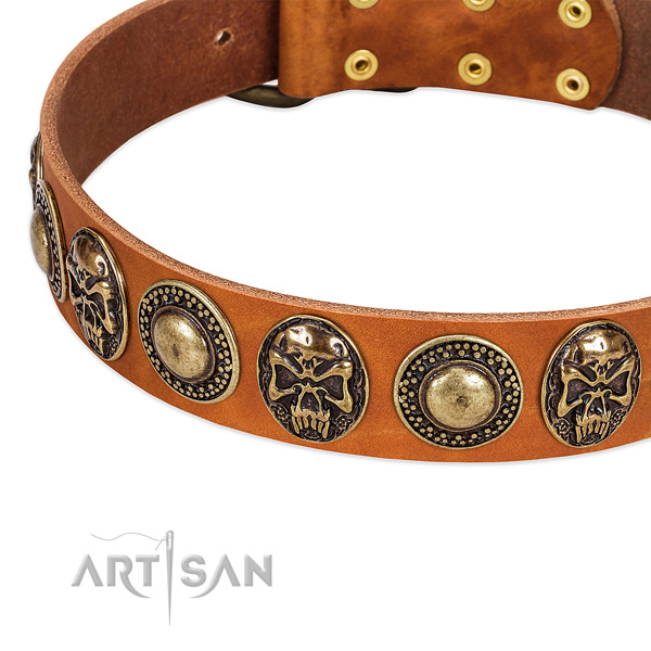 Strong studs on natural leather dog collar for your pet