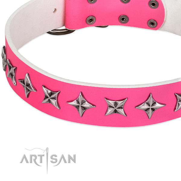 Comfortable wearing embellished dog collar of reliable full grain leather