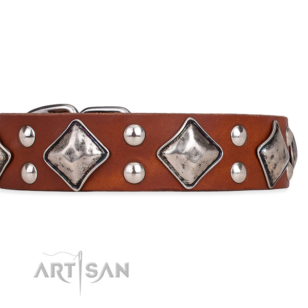 Leather dog collar with incredible durable studs