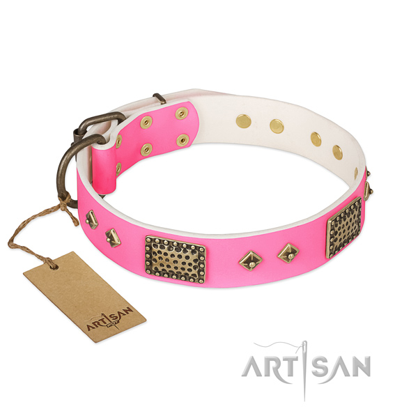 Easy to adjust genuine leather dog collar for everyday walking your canine