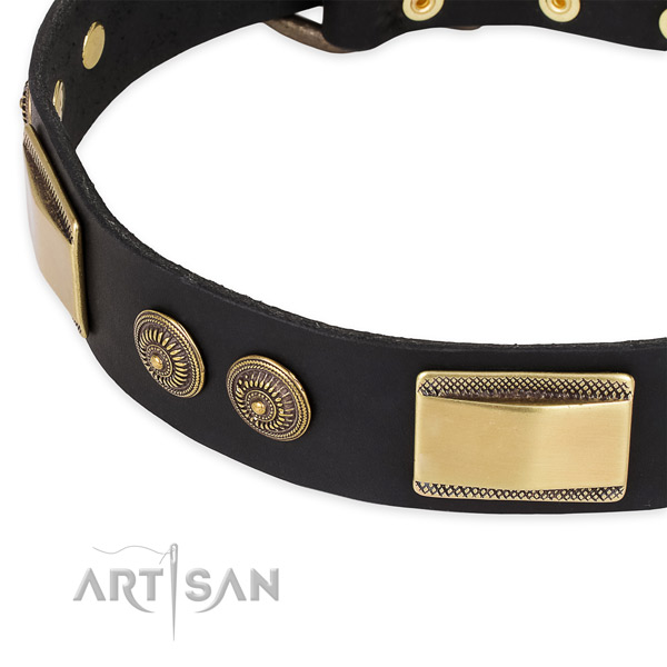 Designer full grain leather collar for your handsome four-legged friend