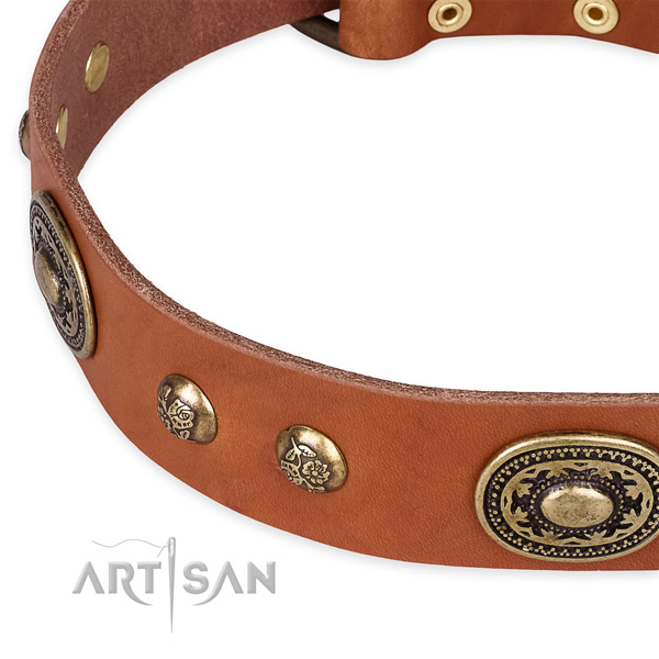 Convenient full grain leather collar for your beautiful dog