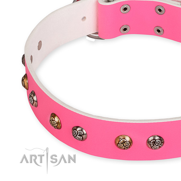 Natural leather dog collar with designer durable studs
