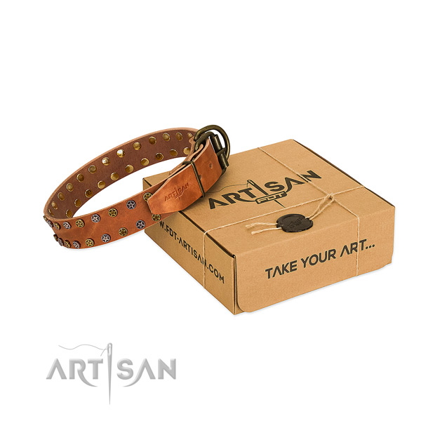 Comfortable wearing flexible full grain leather dog collar with adornments