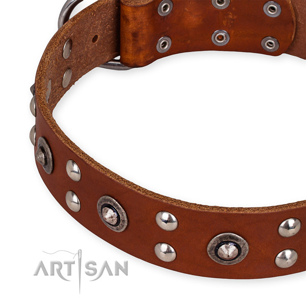 Genuine leather collar with durable buckle for your attractive four-legged friend