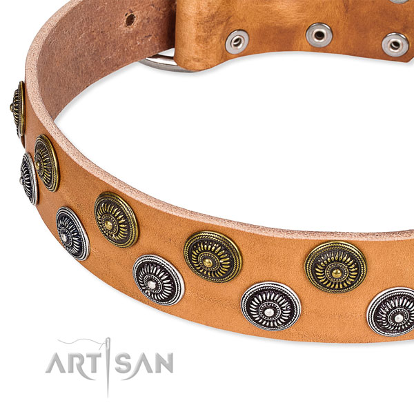 Basic training embellished dog collar of top quality natural leather