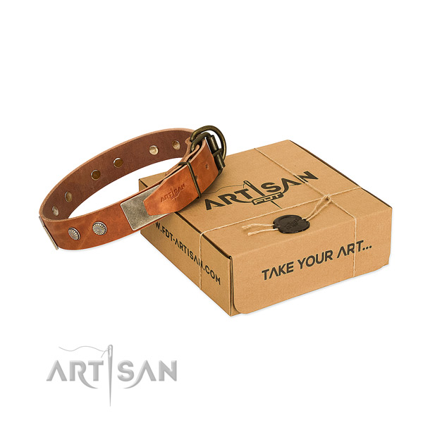 Rust resistant adornments on dog collar for daily use