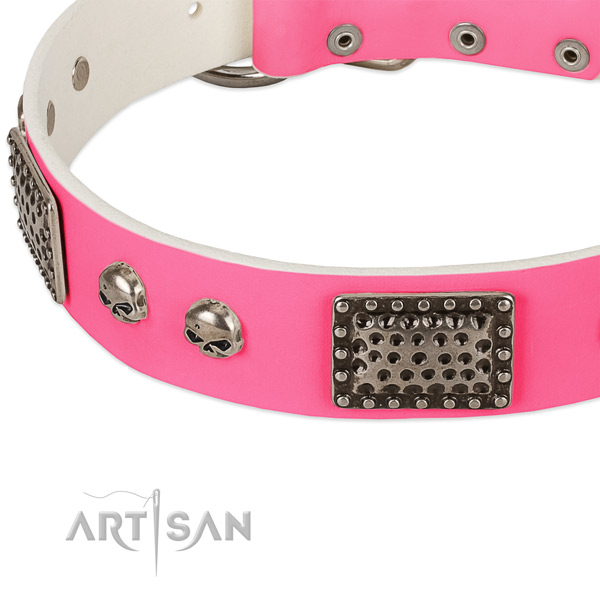 Corrosion proof D-ring on leather dog collar for your doggie
