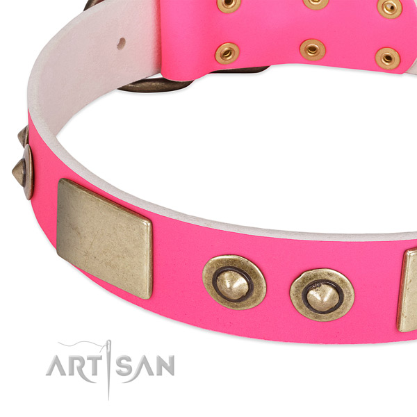 Corrosion resistant embellishments on genuine leather dog collar for your doggie