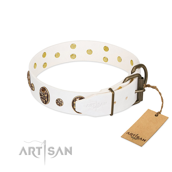 Reliable decorations on full grain natural leather dog collar for your pet
