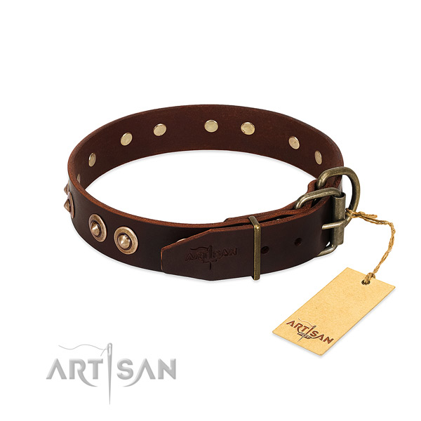 Corrosion resistant embellishments on leather dog collar for your dog