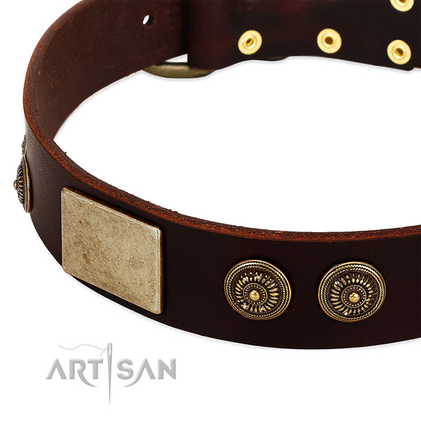 Rust-proof traditional buckle on full grain genuine leather dog collar for your pet