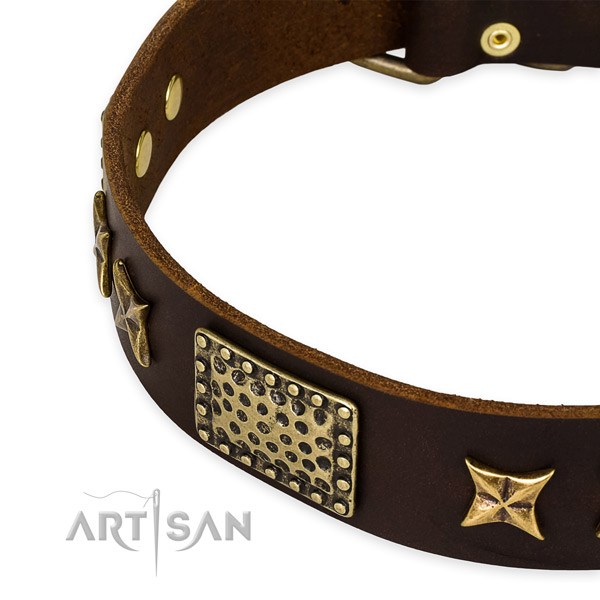 Full grain genuine leather collar with durable fittings for your lovely dog