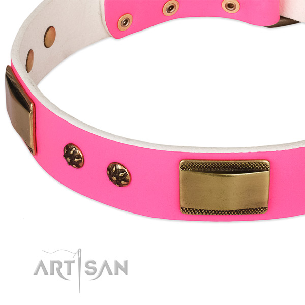 Corrosion resistant traditional buckle on genuine leather dog collar for your pet
