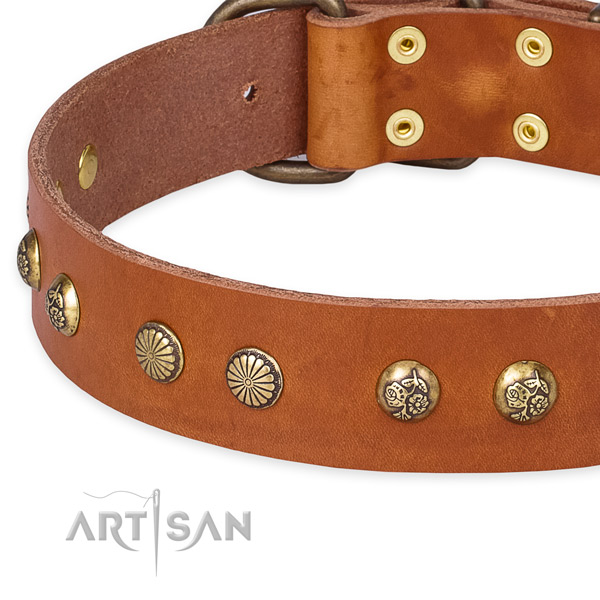 Full grain natural leather collar with durable fittings for your lovely four-legged friend
