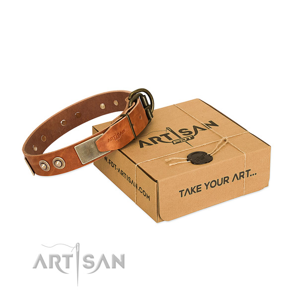 Rust-proof adornments on dog collar for stylish walking