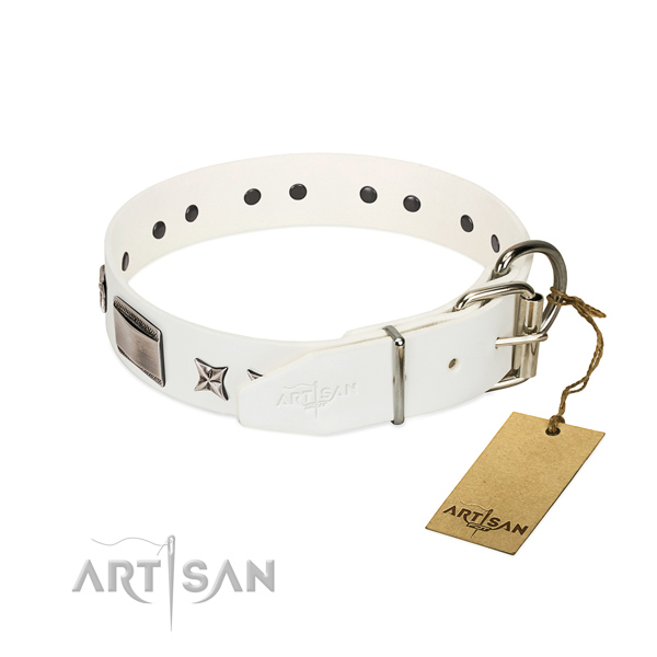 Designer collar of natural leather for your lovely canine