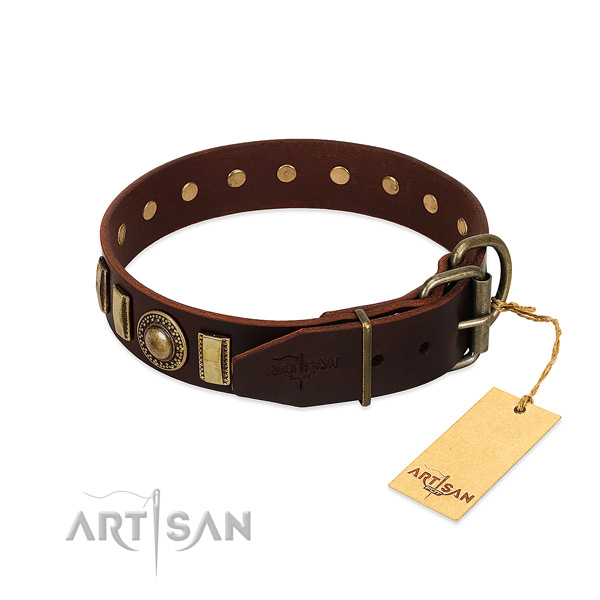 Adjustable leather dog collar with strong fittings