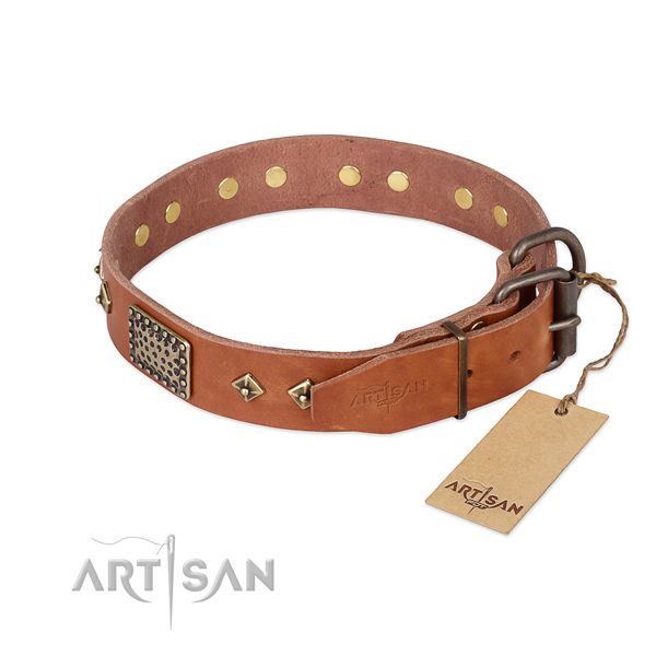 Natural leather dog collar with rust resistant D-ring and embellishments