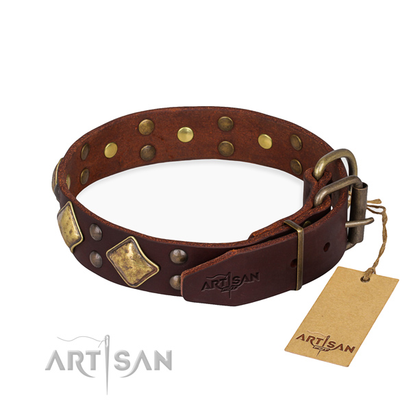 Genuine leather dog collar with stylish durable embellishments