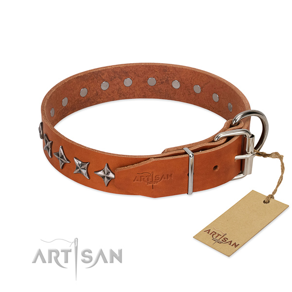 Basic training decorated dog collar of quality full grain genuine leather