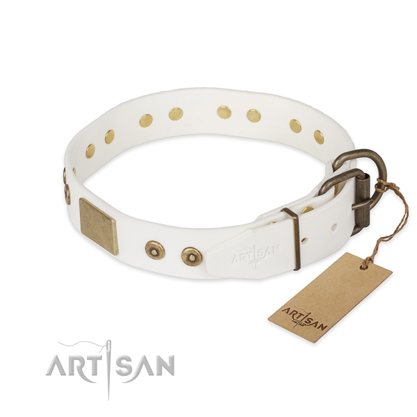 Corrosion proof fittings on full grain leather collar for everyday walking your doggie