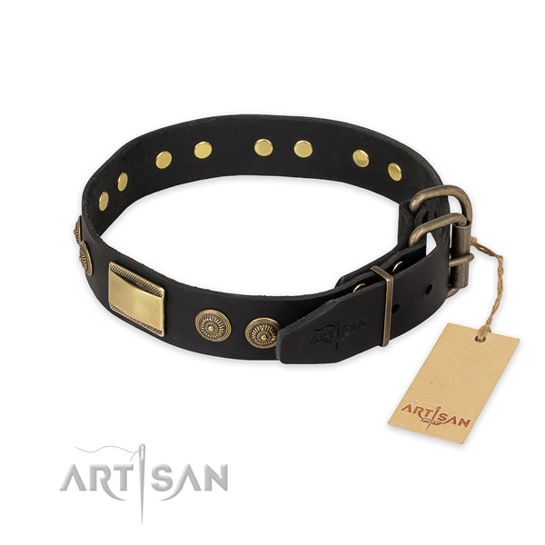 Rust resistant hardware on leather collar for daily walking your pet